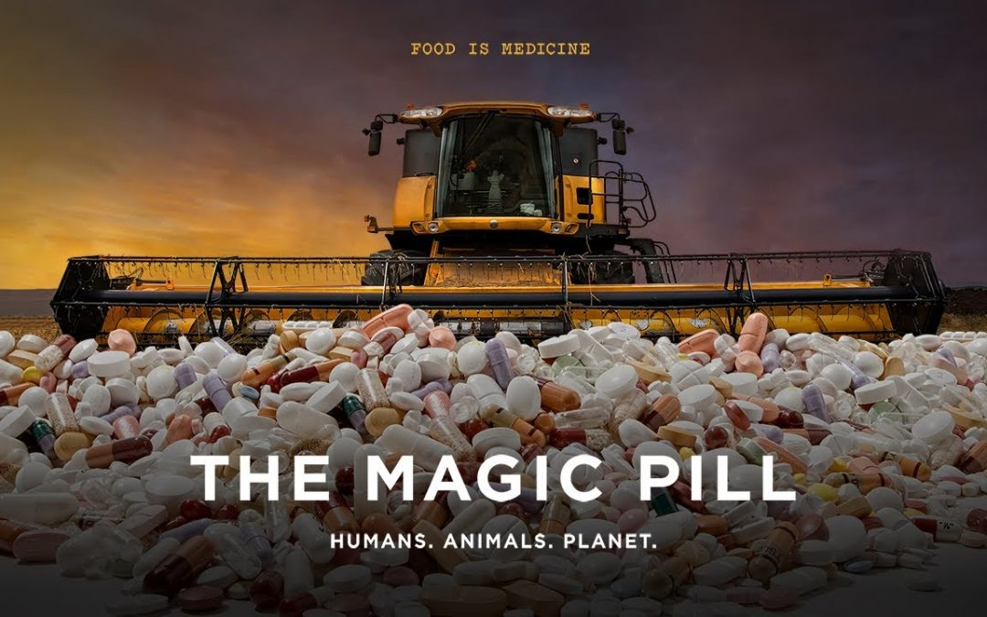 The Magic Pill: Movie Night